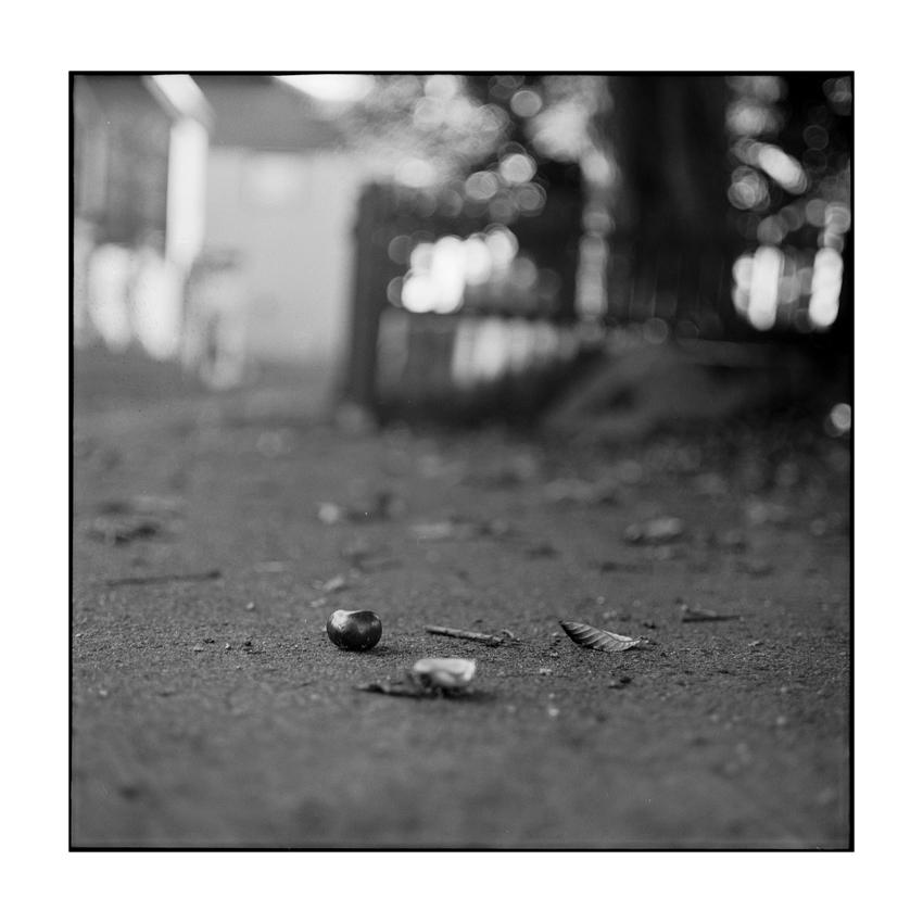 Herbst-Minimalismus