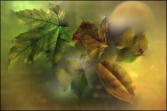 Herbst-Mond 2