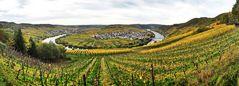 Herbst - Moselschleife - Zummethöhe - Panorama - Trittenheim