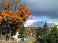 Herbst nach der Flut...
