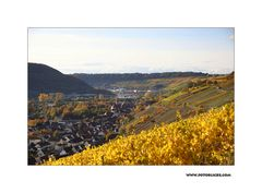 Herbst-Nachlese #1