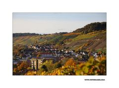 Herbst-Nachlese #2