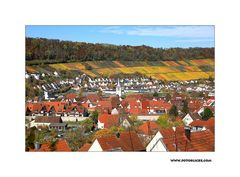 Herbst-Nachlese #3