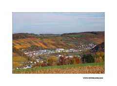 Herbst-Nachlese #5