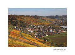 Herbst-Nachlese #6