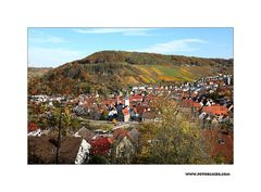 Herbst-Nachlese #8