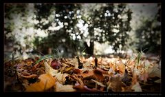 herbst, part I