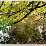 Herbst-Poesy