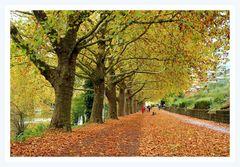 Herbst Promenade, Heilbronn