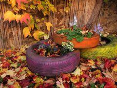 Herbst-Reifen