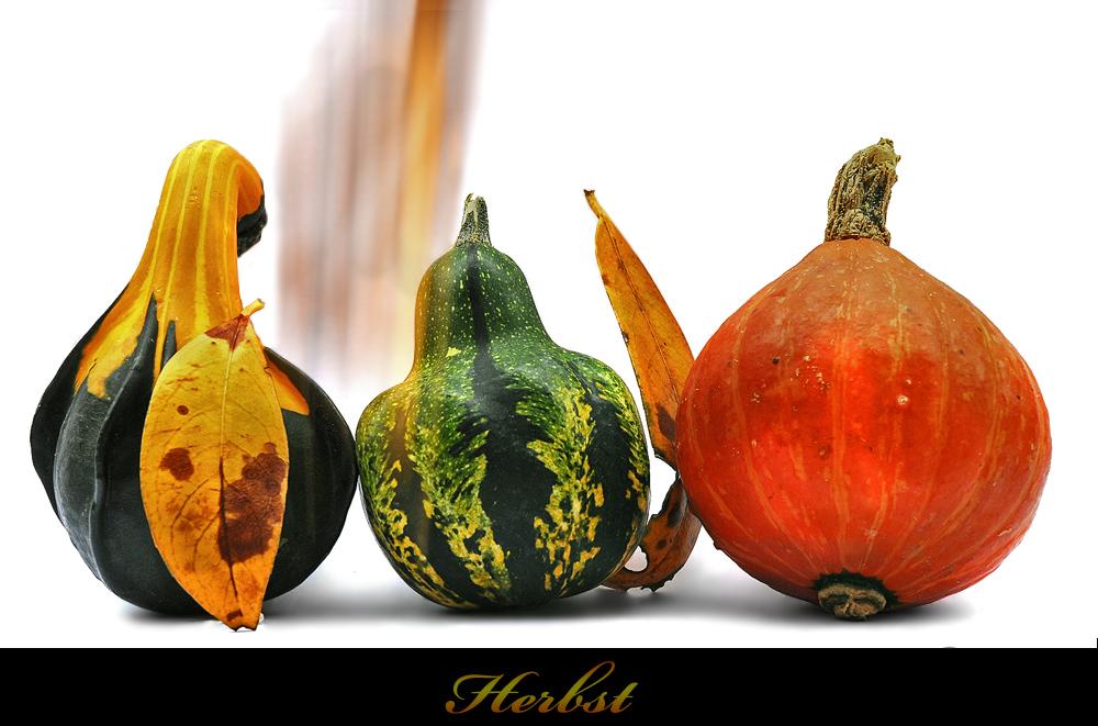 *Herbst-Reloadet*