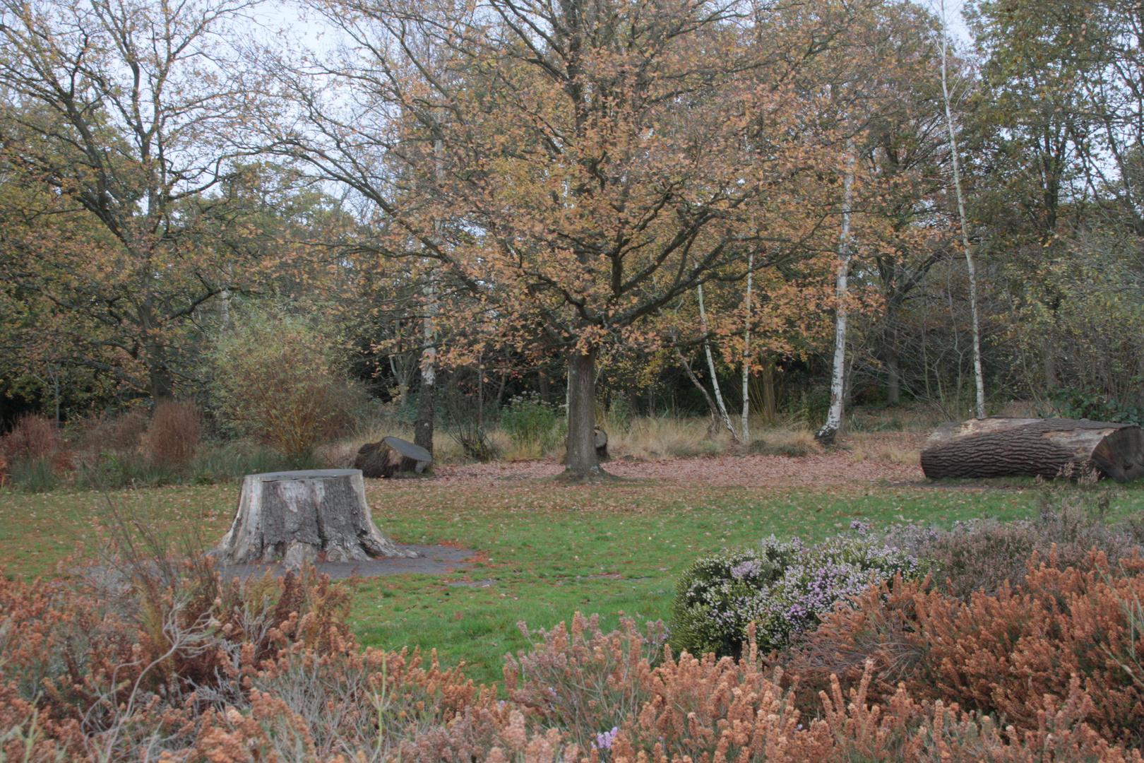 herbst richmond-park london