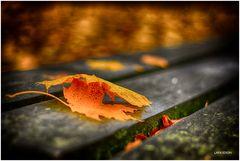 Herbst-Romantik