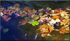 Herbst spanisch