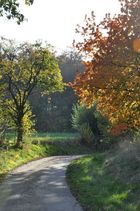 Herbst Spaziergang