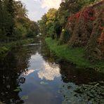 Herbst - Spiegel