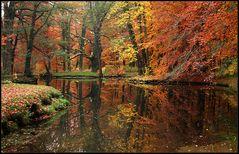 Herbst - Spiegelung...