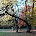 Herbst-Töne