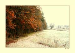 Herbst trifft auf Winter