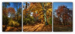 Herbst - Trilogie