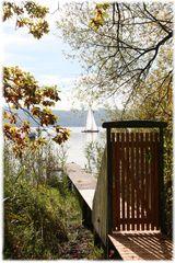 Herbst ......Tür  zum  Ammersee