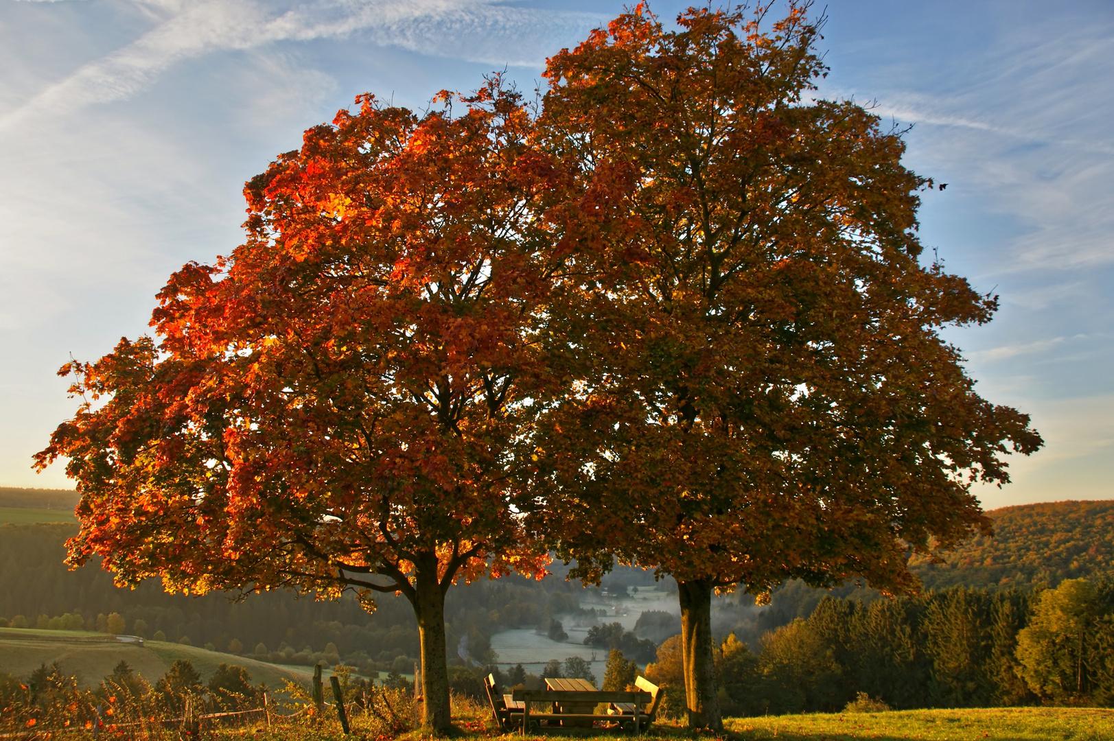 Herbst über dem Almetal