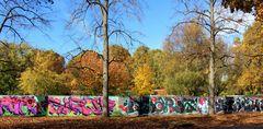 Herbst und alles ist bunt
