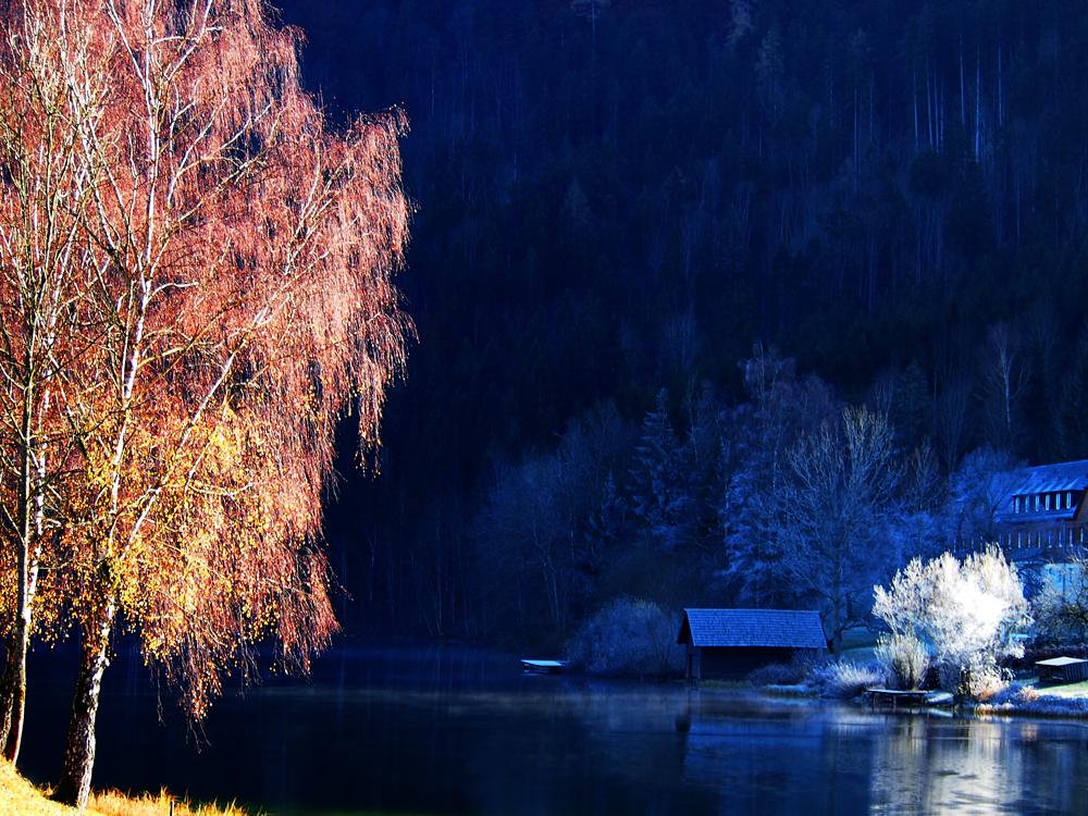 Herbst und Winter am Lunzer See