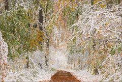 ~ Herbst und Winter ~