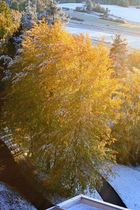 Herbst und Winter gleichzeitig!