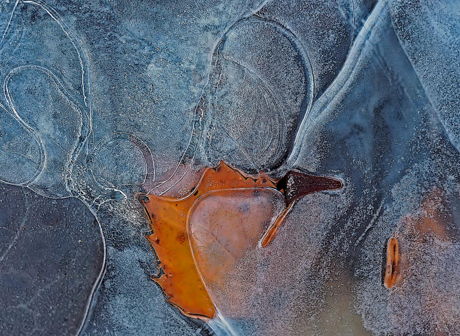 Herbst und Winter umarmen sich... - Quand l'automne et l'hiver s'embrassent!