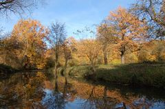 Herbst - unerschöpfliches Thema