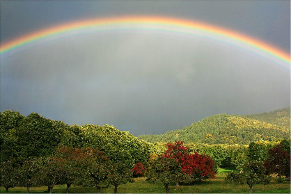 Herbst unter dem Farbenbogen