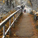 Herbst von Schnee überrascht