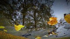 Herbst von seiner schönen Seite