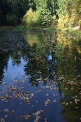 Herbst - wie schön das ist