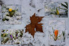 Herbst, Winter und Frühling