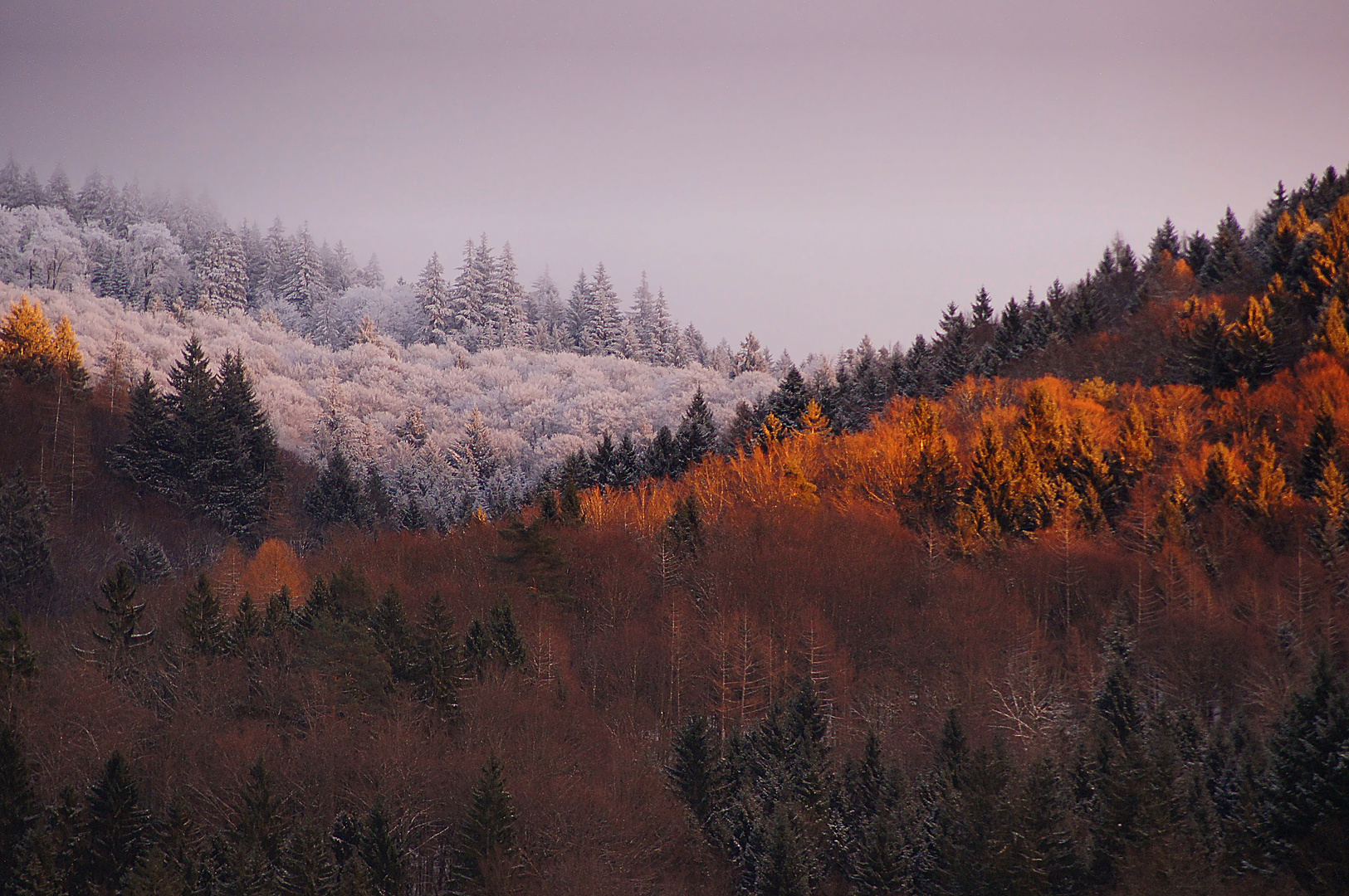 Herbst-Wintergrenze