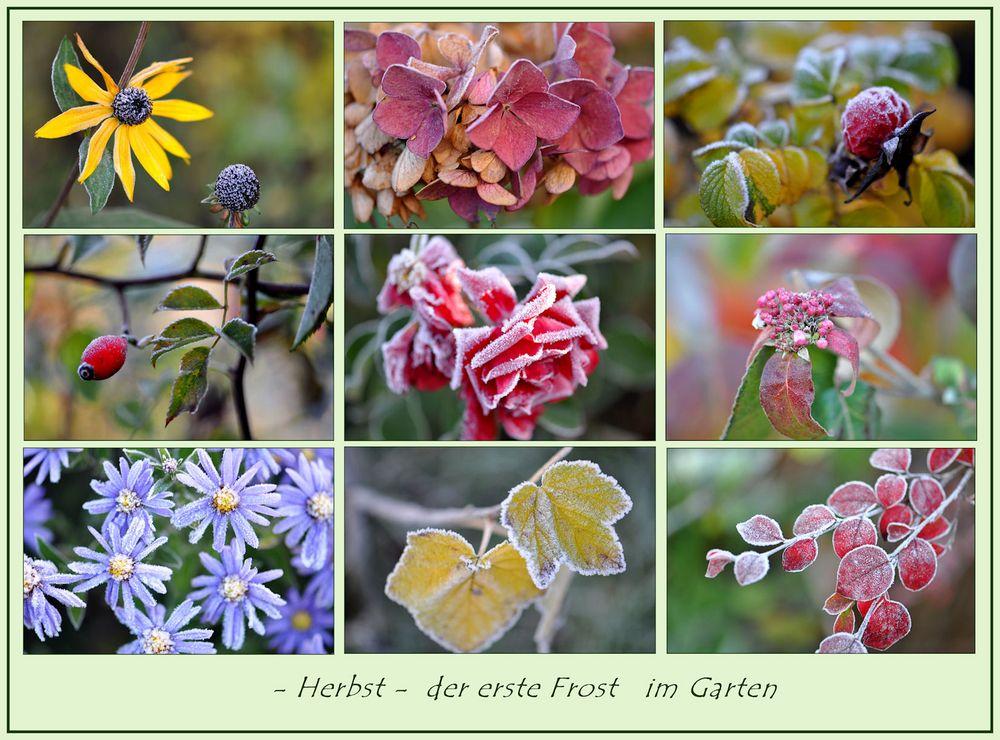 Herbst-ZAUBER -2-