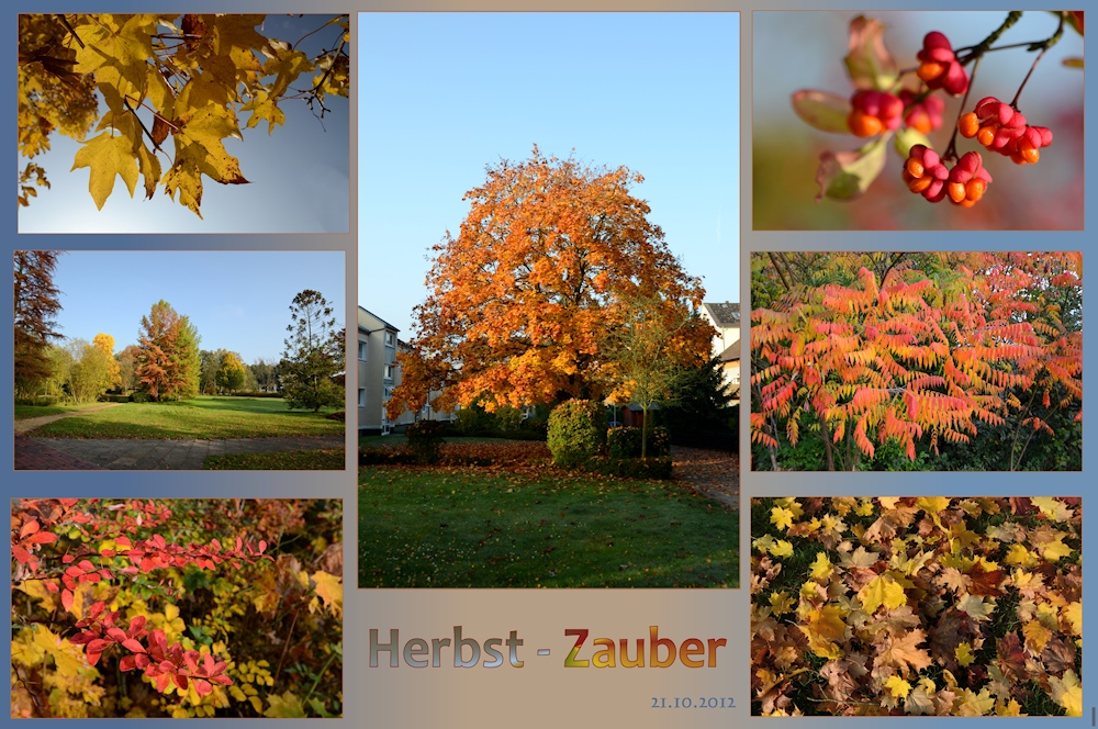 Herbst - Zauber -2-