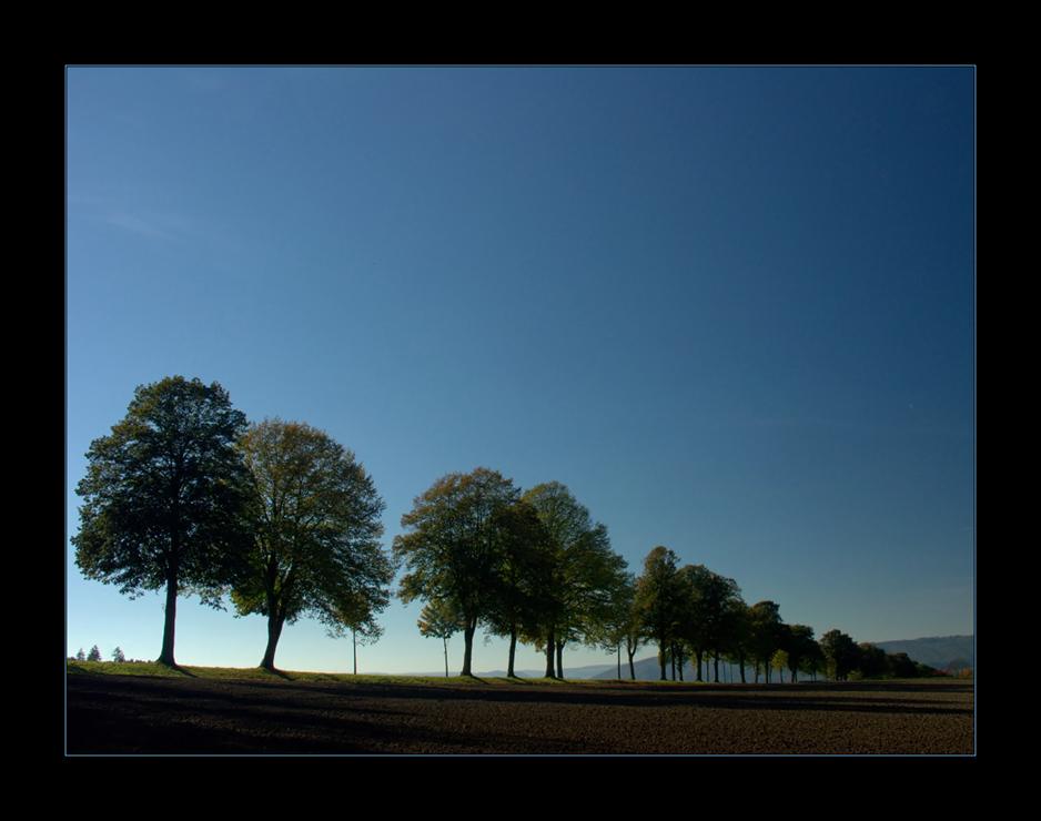 Herbst zieht ins Land...