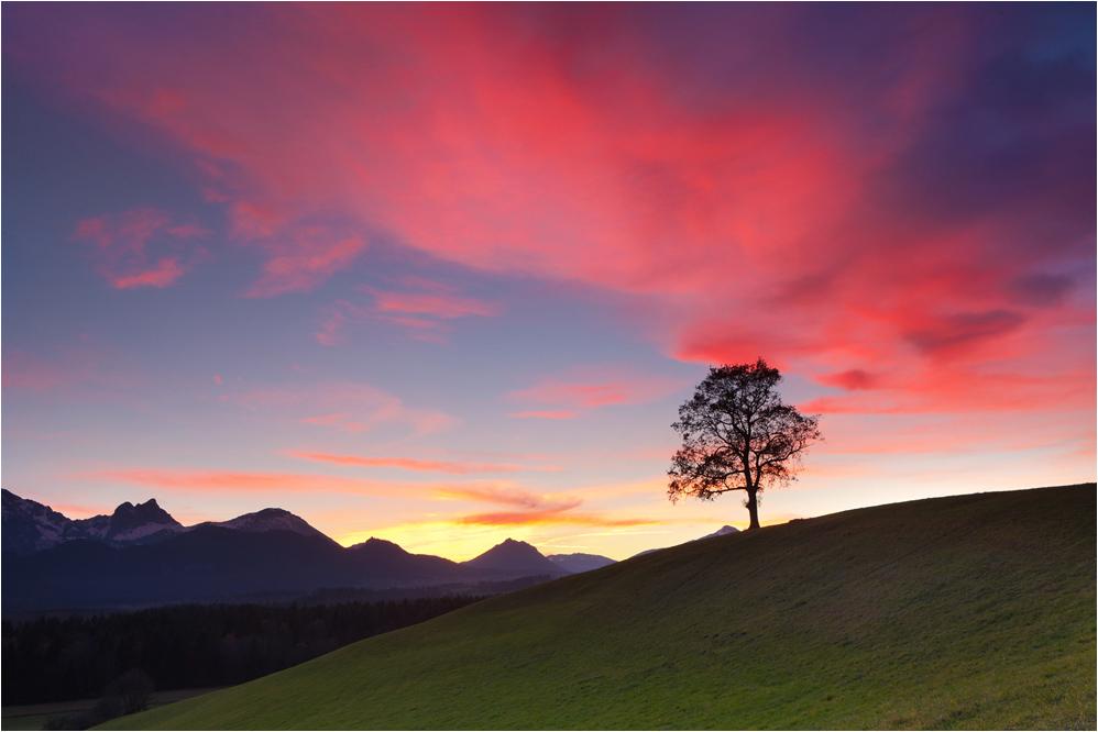 Herbstabend im Allgäu bei Füssen