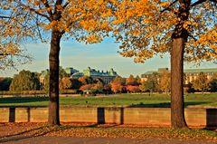 Herbstabend in Dresden