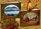 Herbstalben_2013