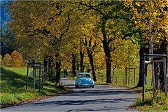 ~ Herbstausflug ~