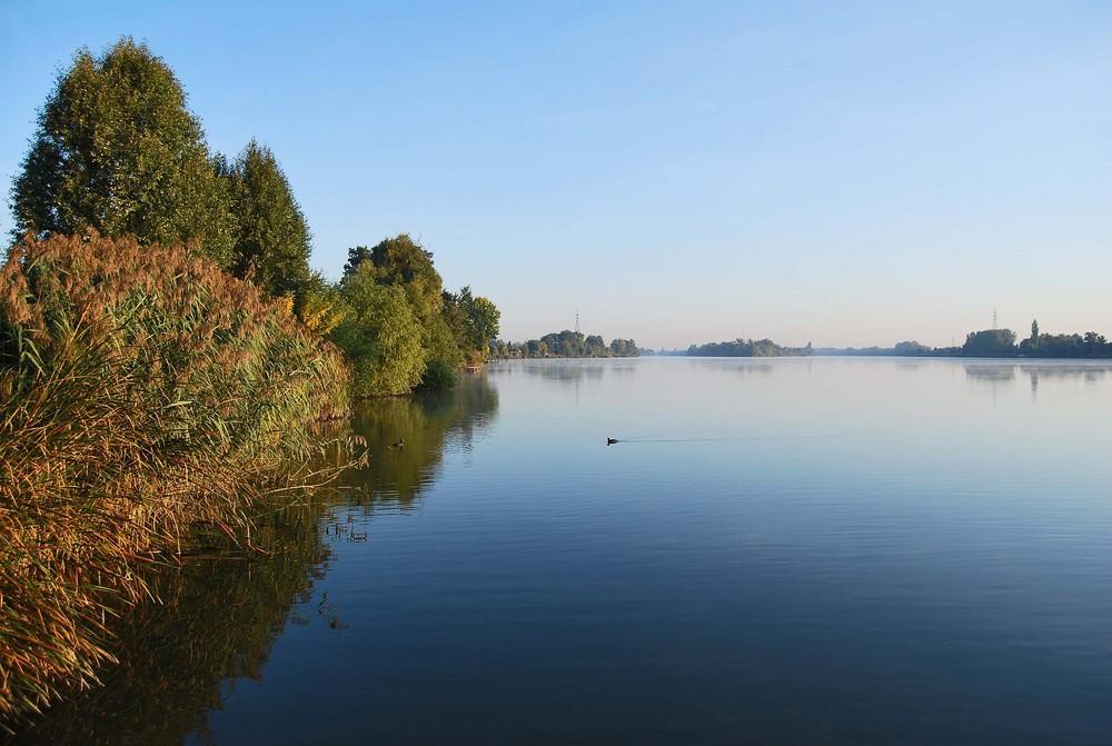 Herbstbild an der Donau (Ungarn)