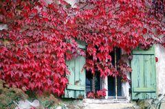 ..Herbstbild..