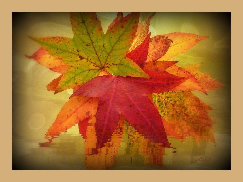 Herbstblätter ...