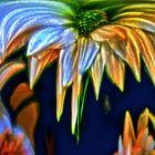 Herbstblumen zum Mittwoch
