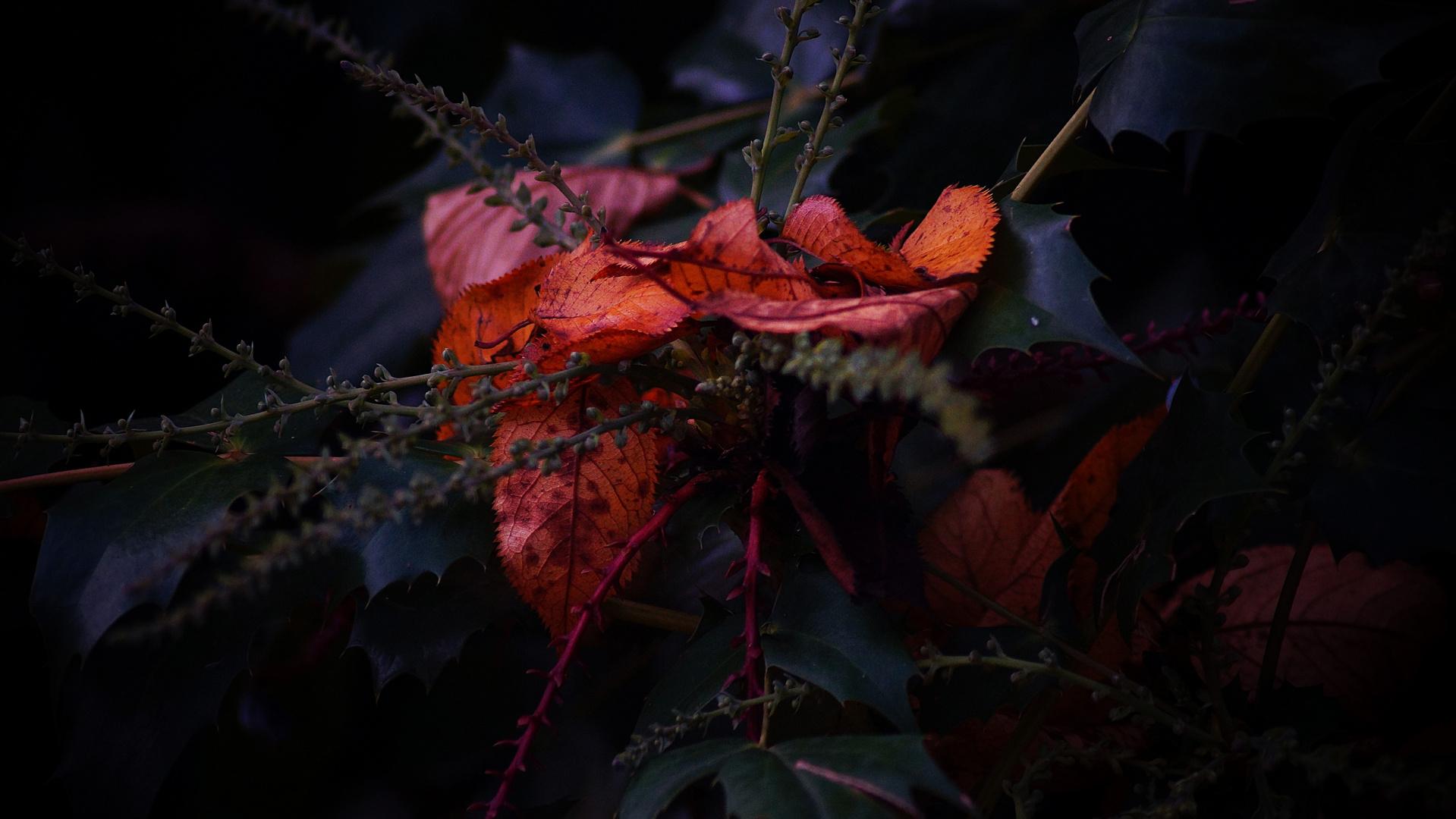 Herbstbouquet